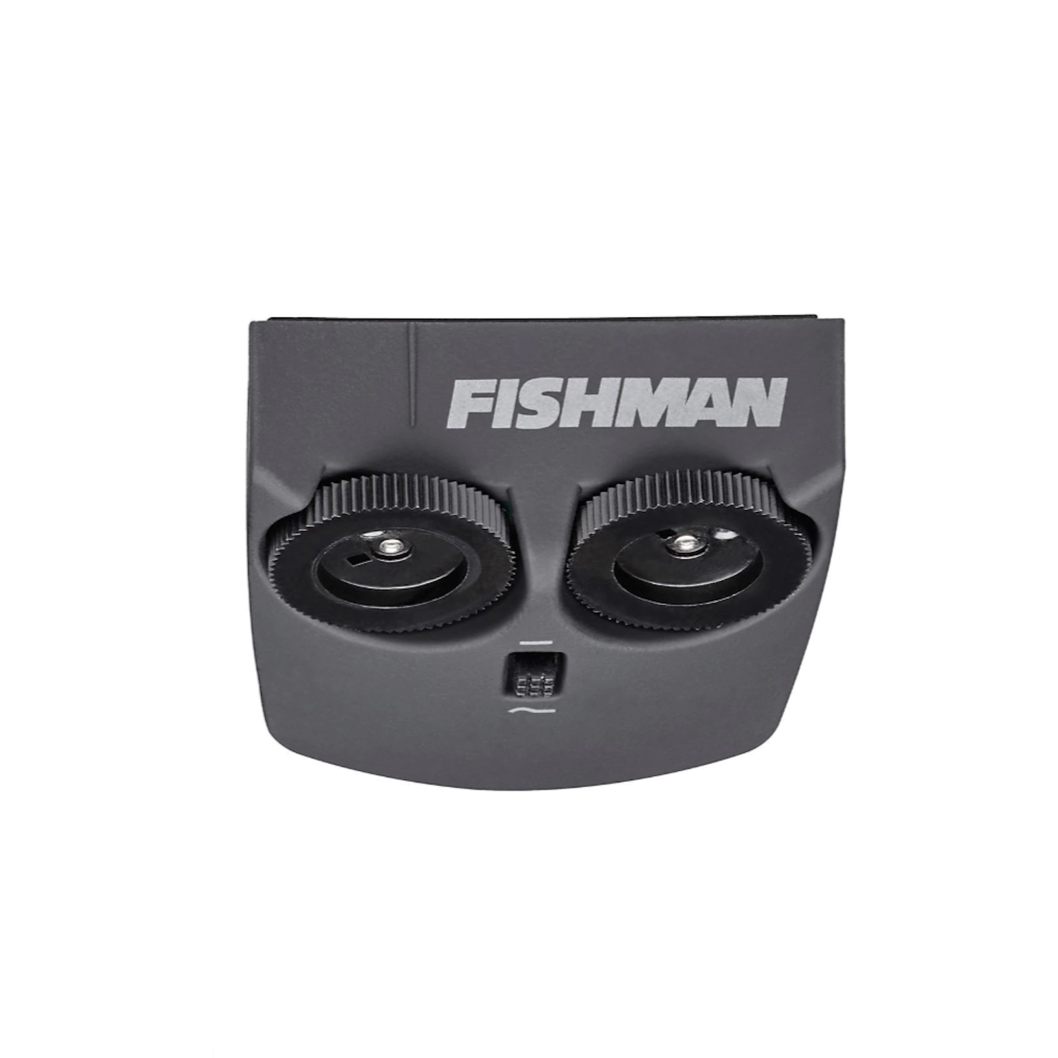 Fishman Matrix Infinity VT Active System Wide Format
