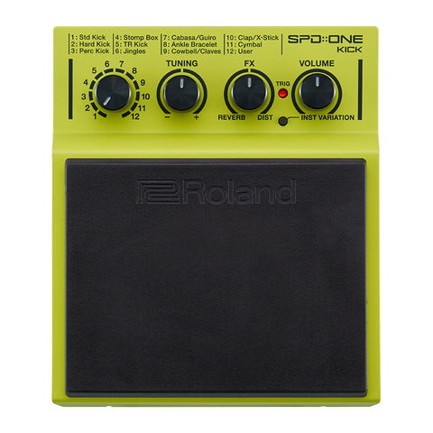 Roland BCTOUR Blues Cube Guitar Amplifier