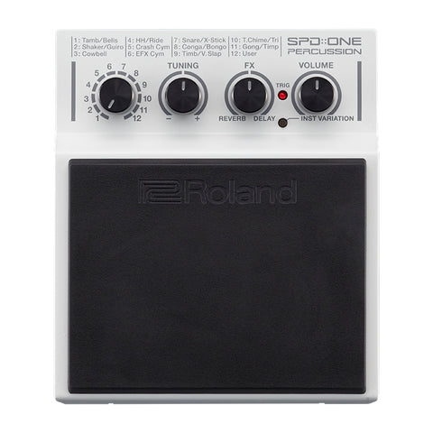 Roland VT12 Vocal Trainer