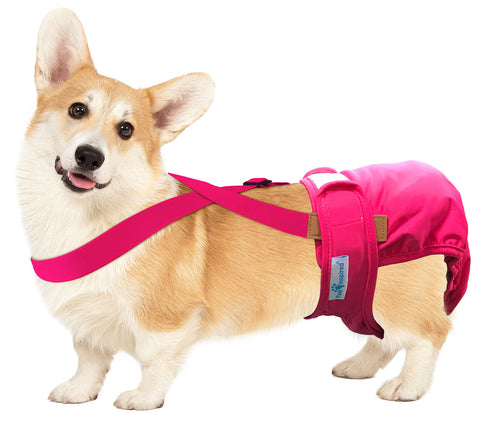 Paw Inspired Washable and Disposable Dog Diaper Suspenders, Pink