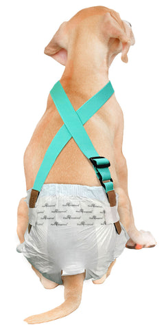 Paw Inspired Washable and Disposable Dog Diaper Suspenders, Aqua