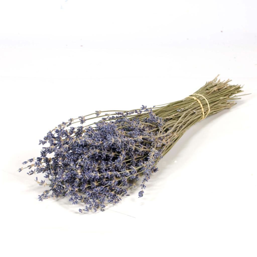 dried lavender purple wild bunch flowers  hanging loop