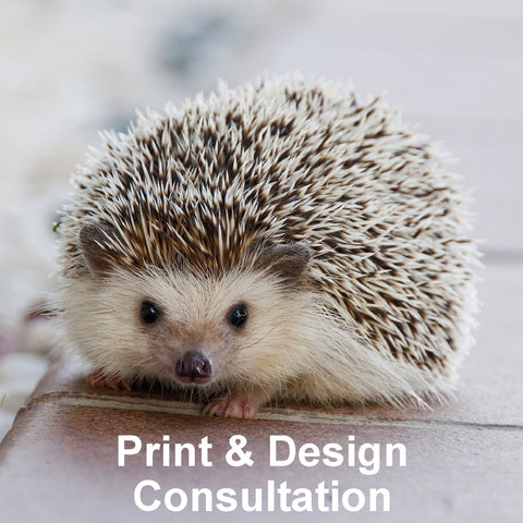 Print and design consultation