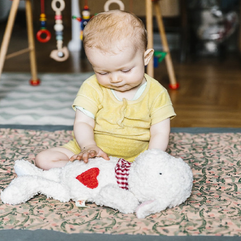 Why should I buy Organic Soft Toys?