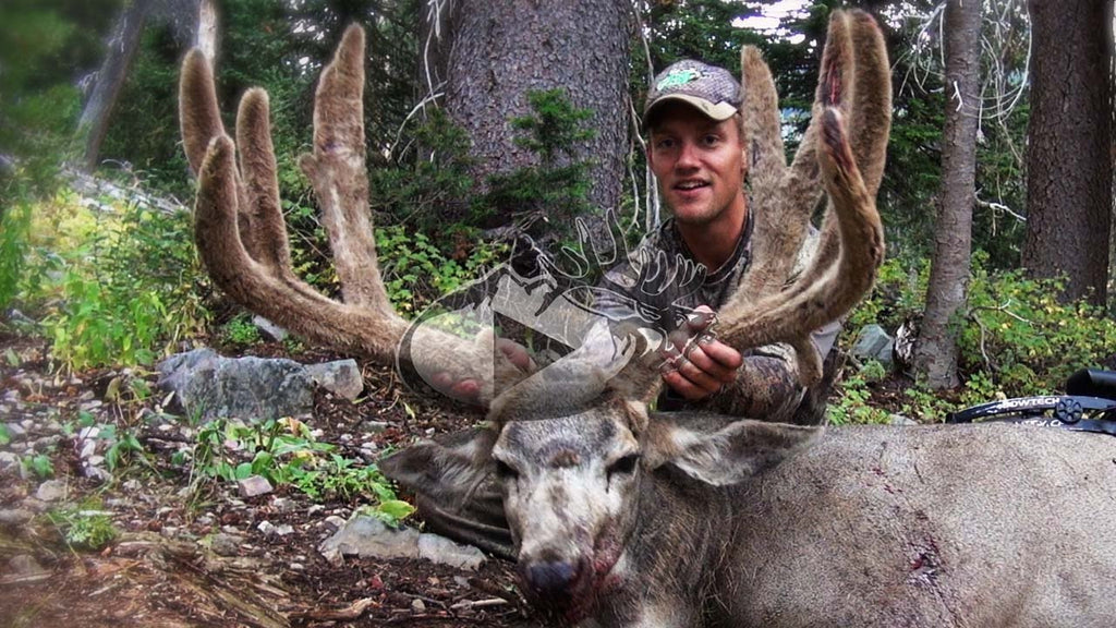 EBJ-Bowhunting Bucks in the Wyoming High Country