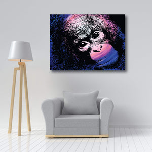 Orangutan - Collectors Edition