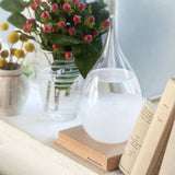Transparent Droplet Storm Glass Water Drop Weather Storm Forecast