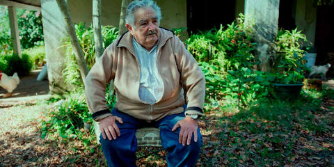Pepe Mujica, ley regulacion cannabis
