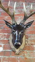 Black Forest Stag Wall Mount Faux Taxidermy