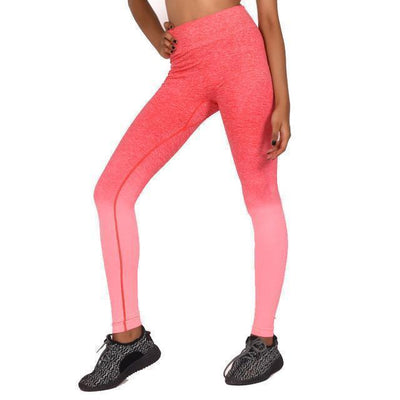 New High Waist Degrade Yoga Leggings - Quick Dry - Dealeaz