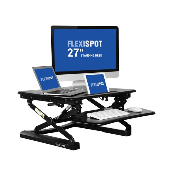 FlexiSpot Standing Desk - 27
