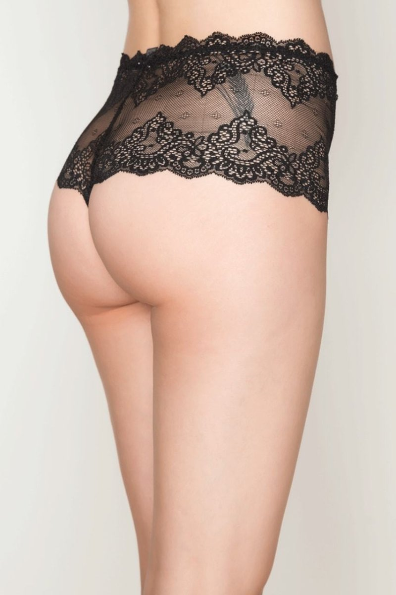Only Hearts So Fine Lace Cheeky Brief 51229