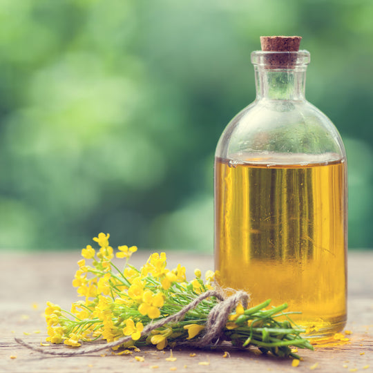 Why Plant Oils