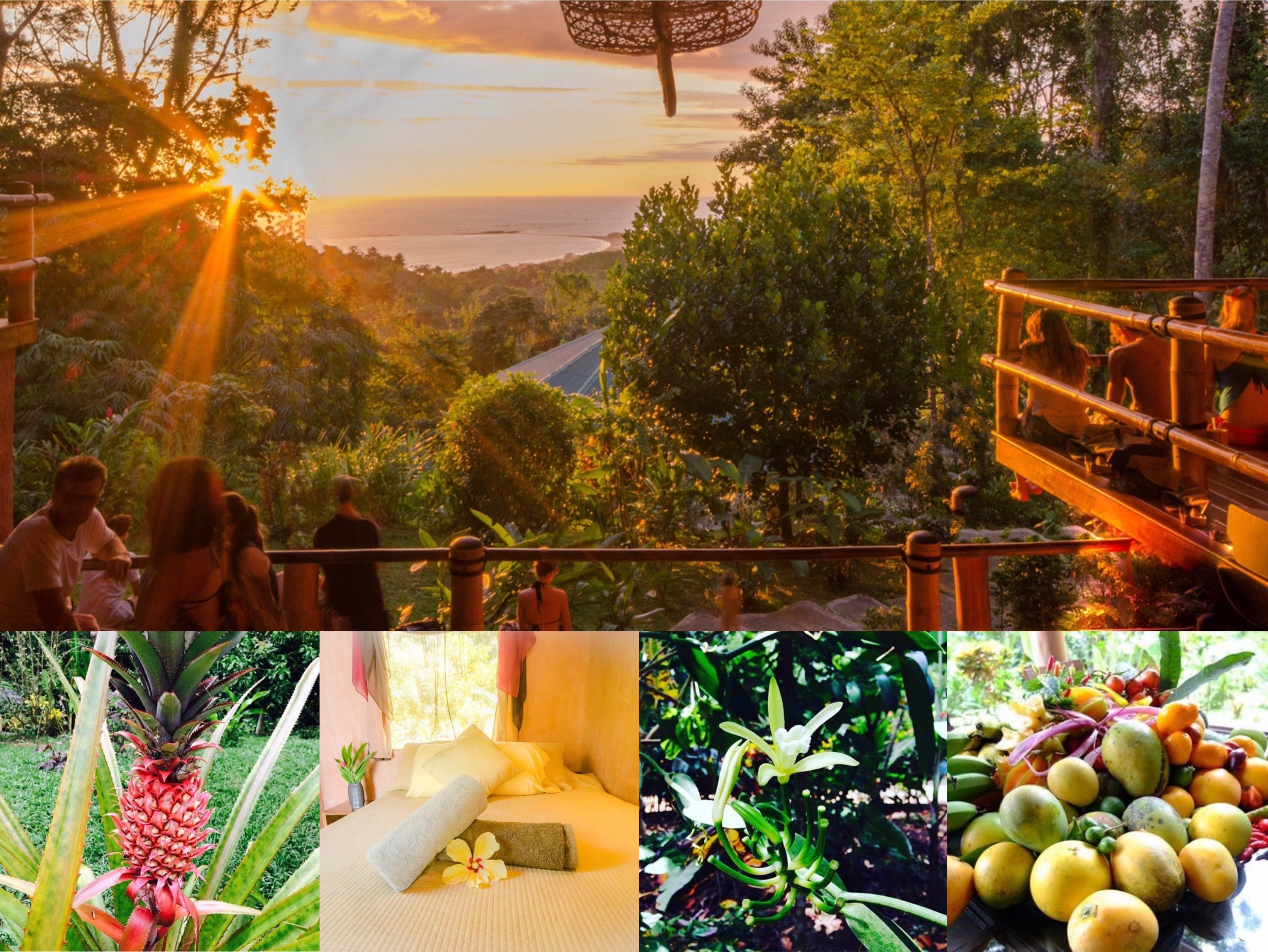 Costa Rica 7 Day Retreat