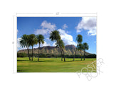 Diamond Head with Palms Matted Photo Print