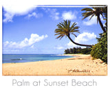 "Palm at Sunset Beach 2"" x 3"" Magnet"