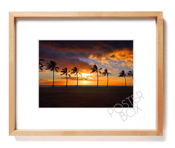 Swaying Palms at Sunset Matted Photo Print