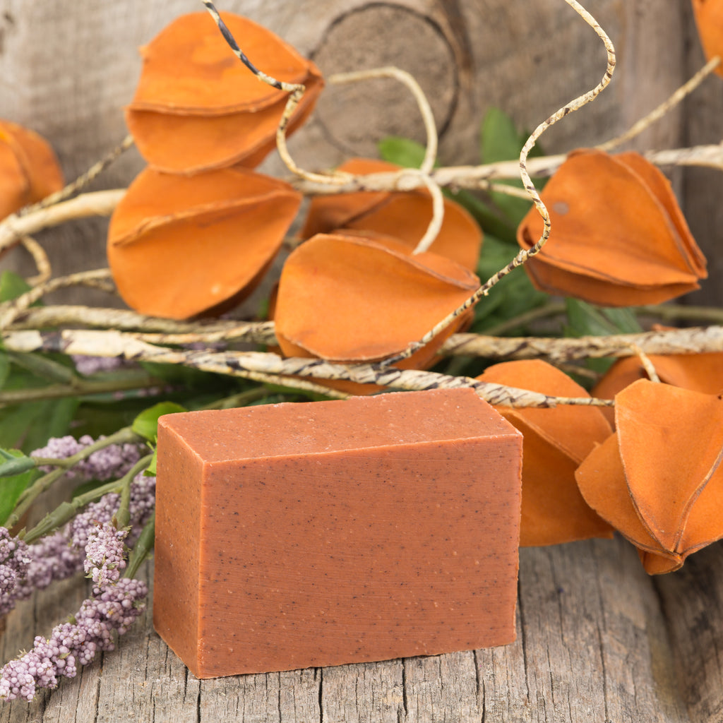 Pumpkin Pie Bar Soap - 5oz
