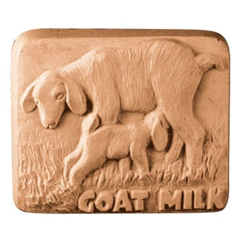 Goat Milk Bar Milky Way Soap Mold
