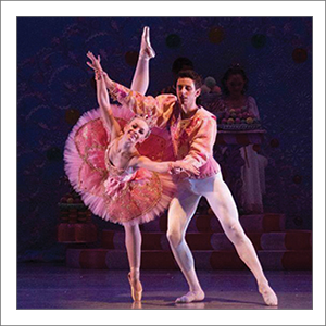 What Kind of Tutu is Best for Partnering?