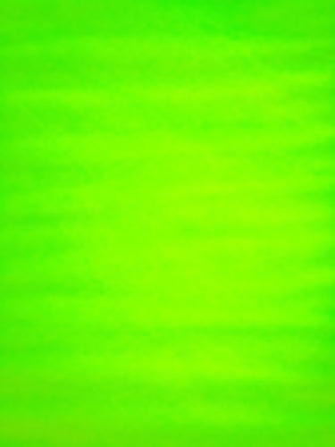 Glimmer Tulle - 54-inches Wide Citrus (Fl. Green)