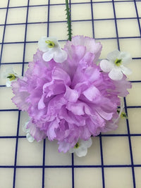 Flowers - Carnation Orchid  with White Flowers