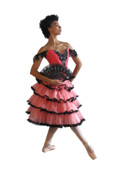 Tutu & Bodice Kit: Ruffled Tiered Skirt & 6 Piece Bodice