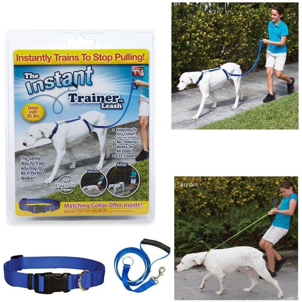 Easy Trainer Leash