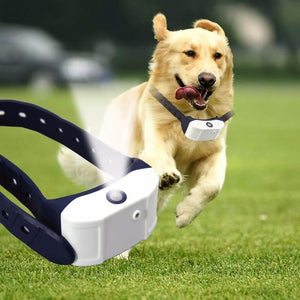 AntiWoof™ - Rechargeable Bark Control Collar