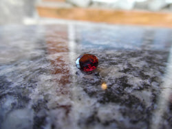 0.82ct PERFECT RED MONTANA GARNET - Blaze-N-Gems