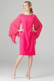 Pleated Sleeve Chiffon Dress