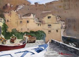 Terraced Boats, Manarola