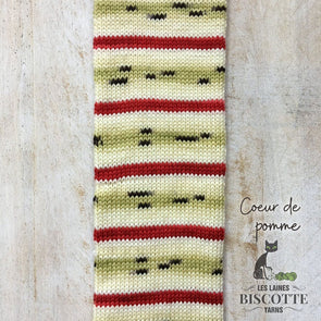 Biscotte Yarns | Bis-sock