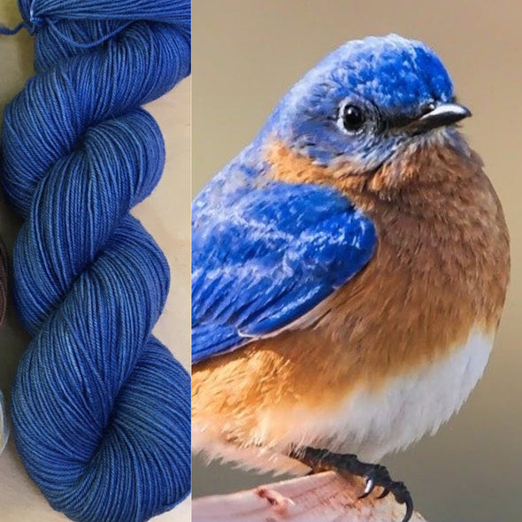 Round Mountain Fibers | Ornithology Club