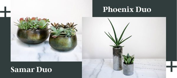 Industrial Style - Petaloom Samar Duo and Phoenix Duo