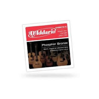 D'Addario EPBB170-5 Acoustic Bass Guitar String Set Spokane sale Hoffman Music 019954961152