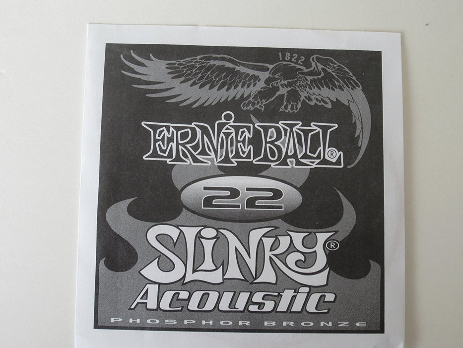 Ernie Ball 1822 Acoustic Guitar Single String Spokane sale Hoffman Music 749699118220
