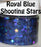 Royal Blue Shooting Stars Body Glitter GlitterLambs.com Chunky Holographic Body Glitter