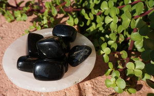 Black Obsidian Palm Stones