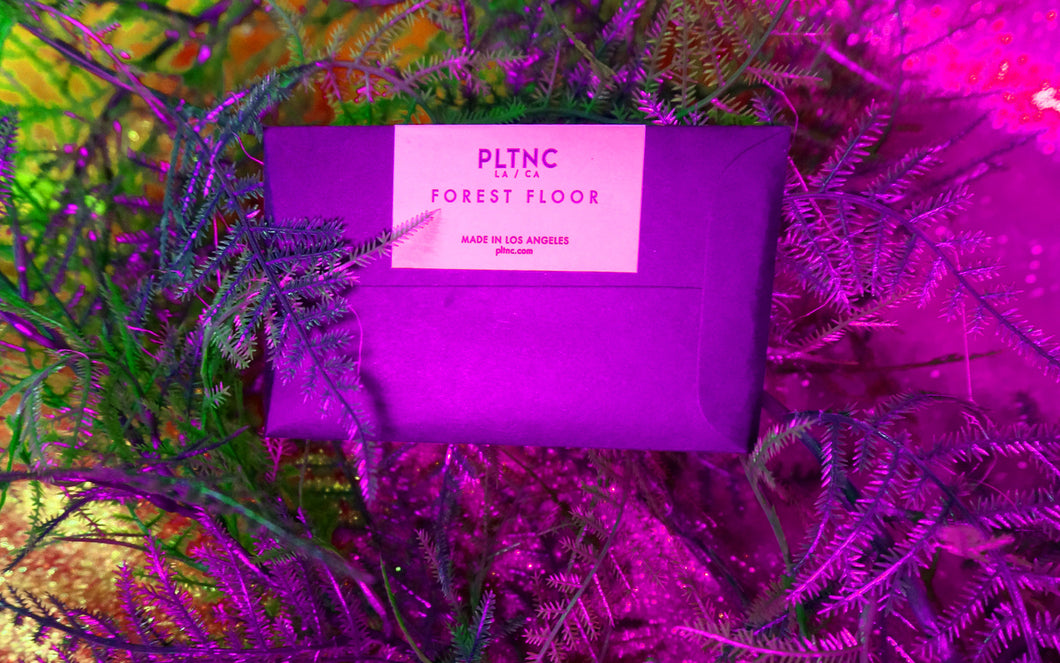 PLTNC Forest Floor Incense Sample