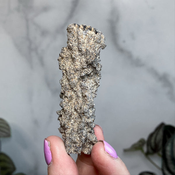 Fulgurite (Authentic Lightening Glass) | Stock G