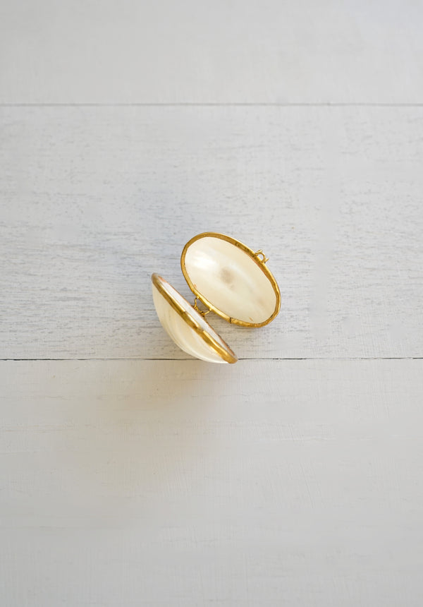 Small Delicate Shell and Brass Trinket Box