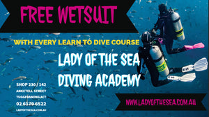 Learn to Dive - 15th January 2019
