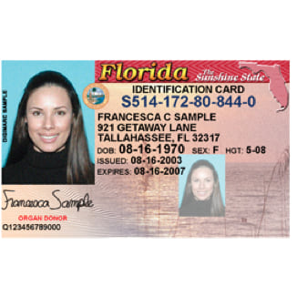 Translation of Driver's License - FIRST STEP TRANSLATIONS CORPORATION