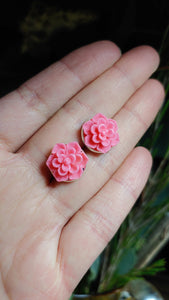 Succulent Love Earrings