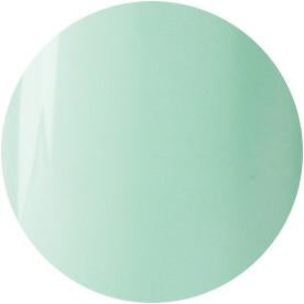 Presto Color Gel 123 Mint Green Bottle 0.5oz 10g