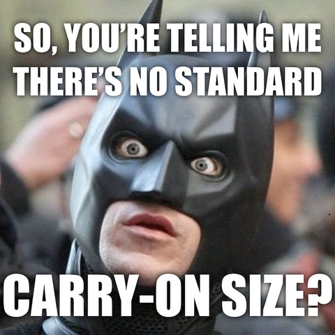 shocked-batman-carry-on-size-funny