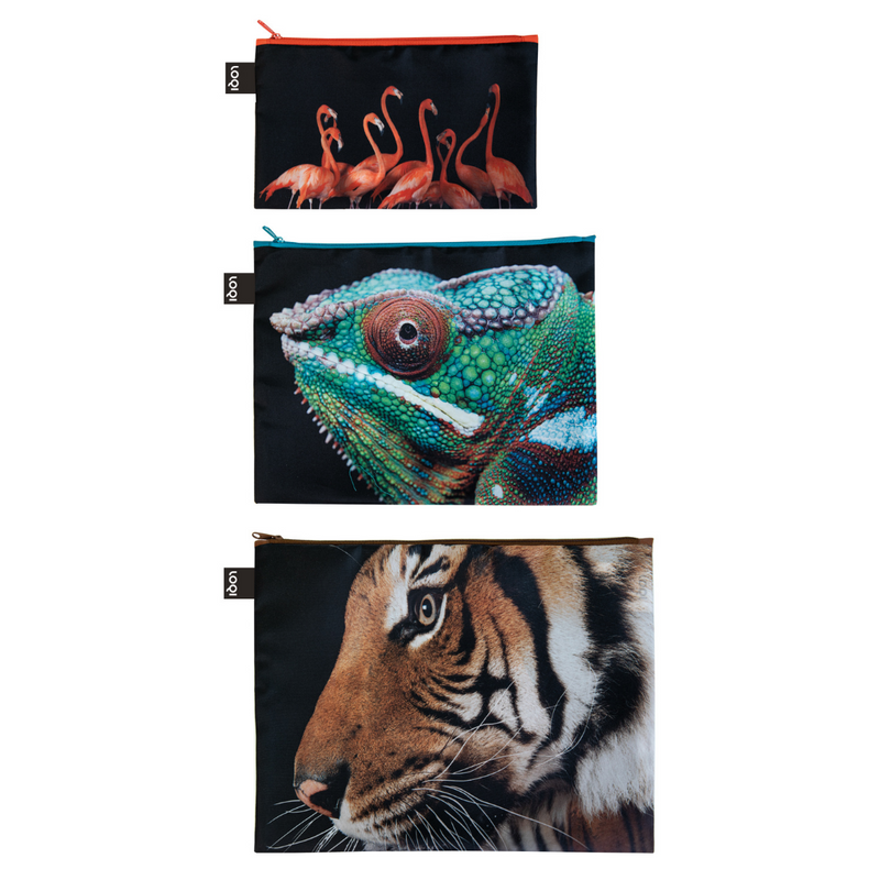 Loqi Zip Pocket (Set Of 3) National Geographic Collection - Tiger Chameleon Flamingos