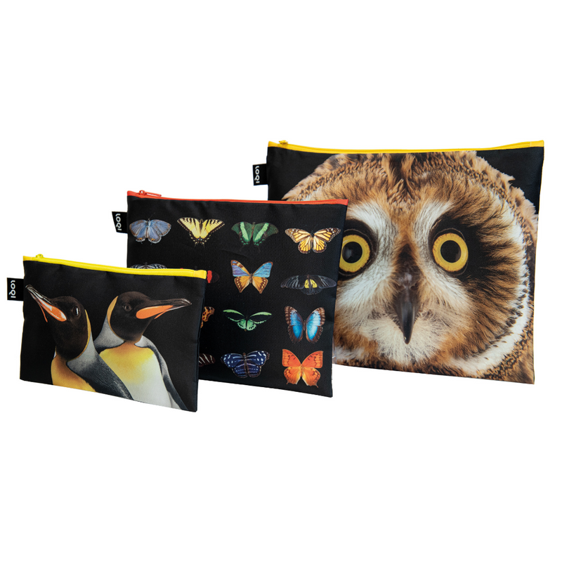 Loqi Zip Pocket (Set Of 3) National Geographic Collection - Owl Butterflies Penguins