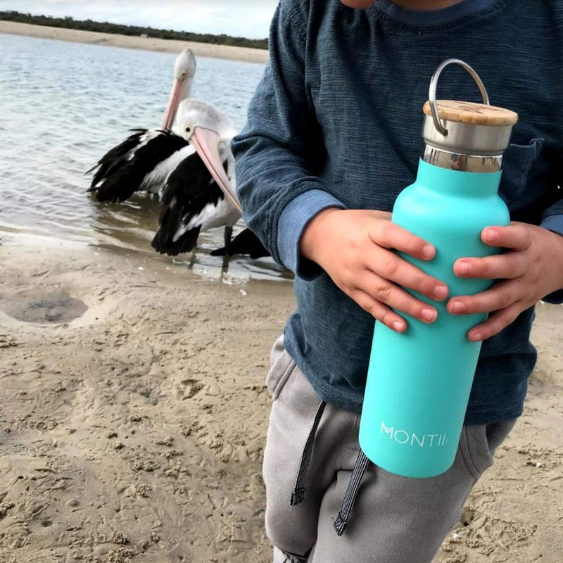 Montii Co Insulated Drink Bottle Teal,Stainless Steel Water Bottle, Montii - Yum Yum Store